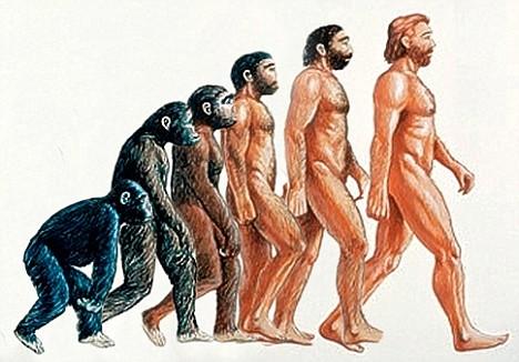 La cocción de la carne pudo impulsar la evolución humana