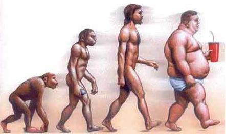 La capacidad de cocinar alimentos proporcionó más energía a los seres humanos y facilitó su evolución, según un estudio