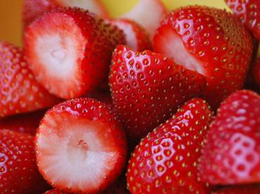 Crean microplanta tratadora para sanear cultivos de fresa