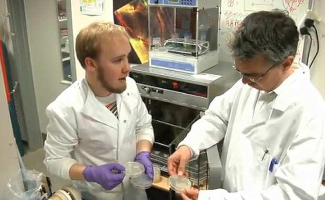 Vendaje nanotecnológico que avisa de una infección
