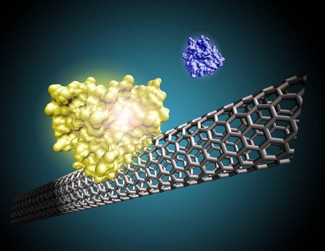 Diagnósticos médicos más rápidos gracias a los nanotubos de carbono.